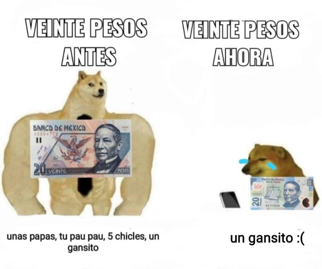 Dopl3r Com Memes Y Gifs De Perro
