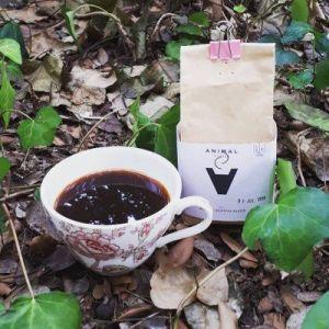 Que es el café de especialidad o specialty coffee
