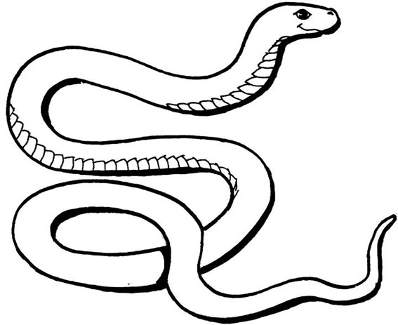 free snake colouring pages for kids to download