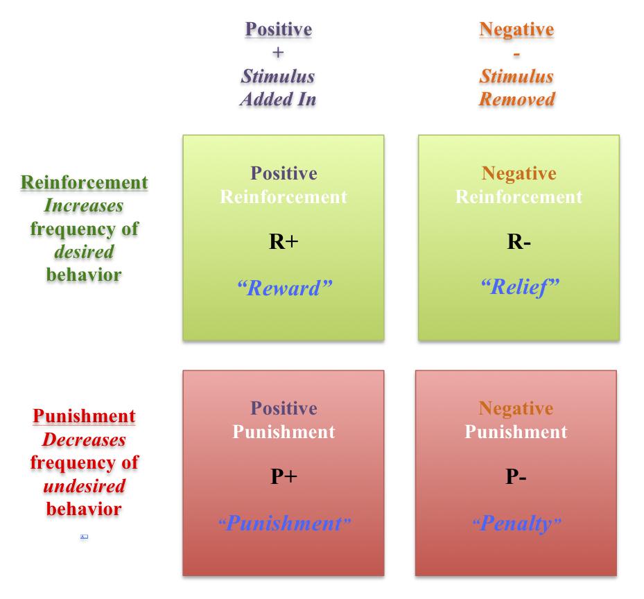Positive Reinforcement Matrix For Blog Jpg Anima Learning