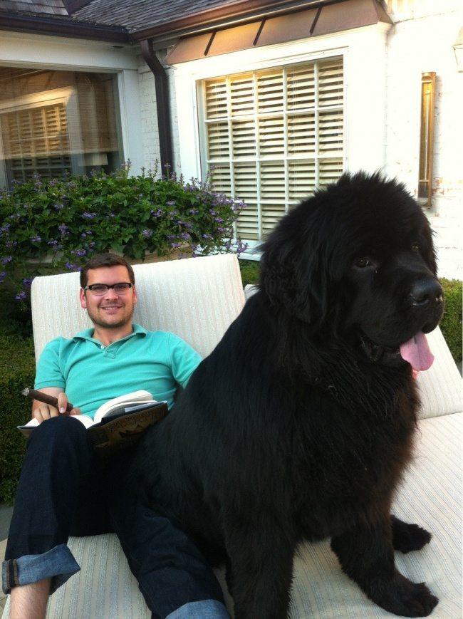 big-dog-6
