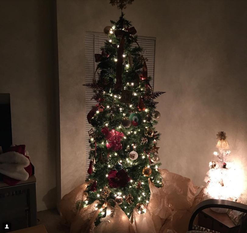 4-how-these-people-saved-christmas-trees-is-brilliant