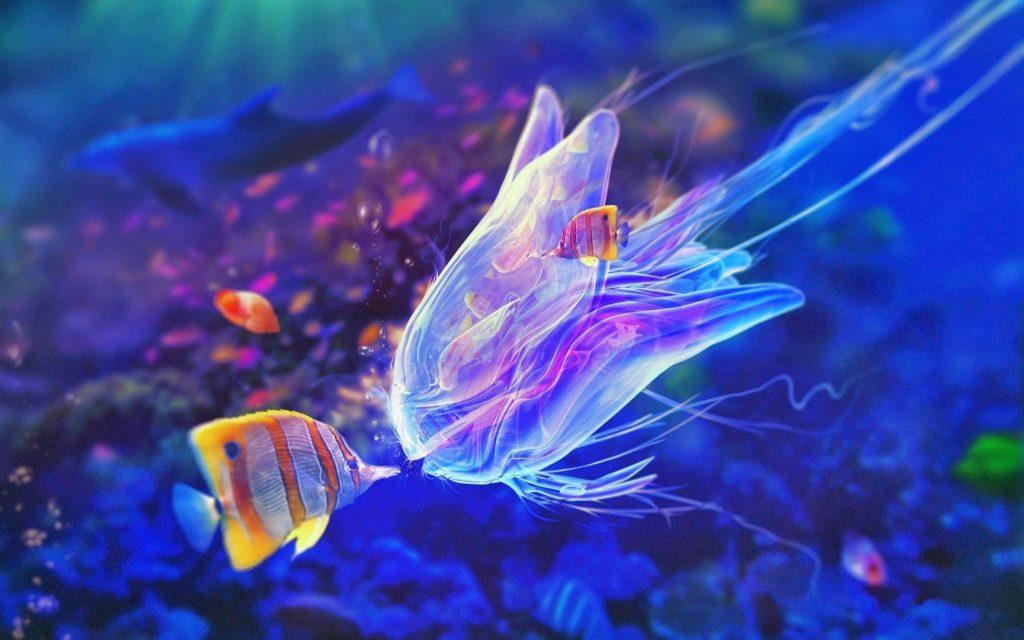 sea-fish