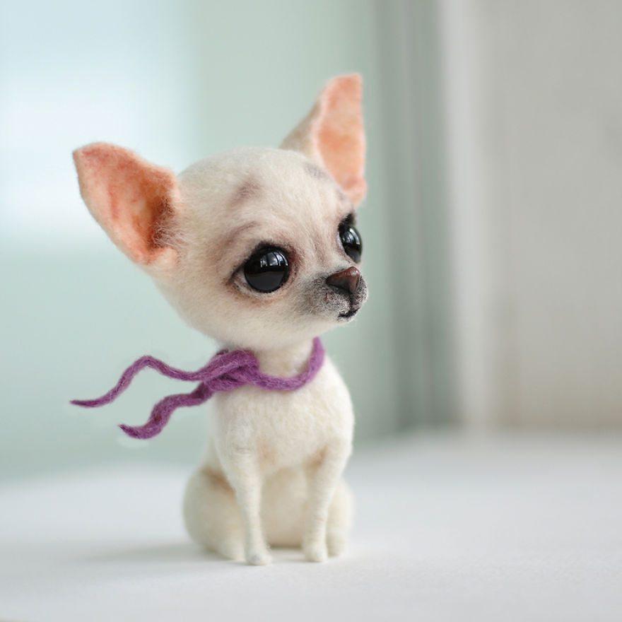 beautiful-pets-6