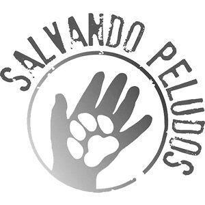 Logo Salvando Peludos