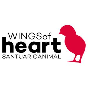 Logo Wings of Heart