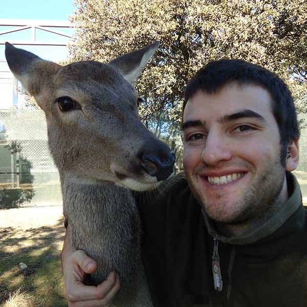 Veterinario junto a un ciervo