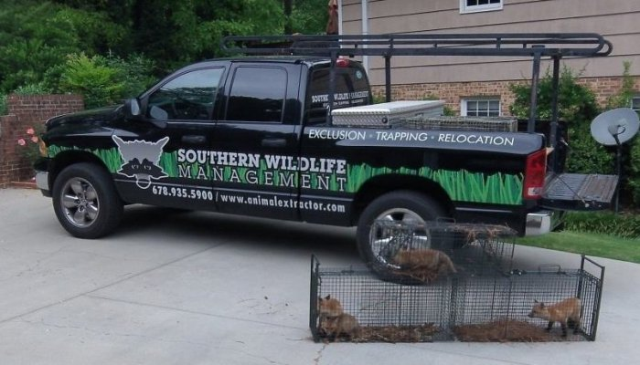 wildlife trapping truck