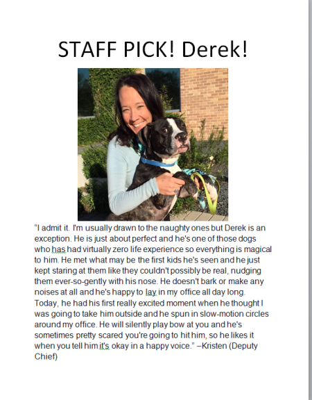 derek staff pick