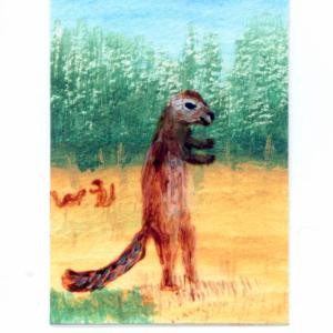 Xerus squirrel miniature painting