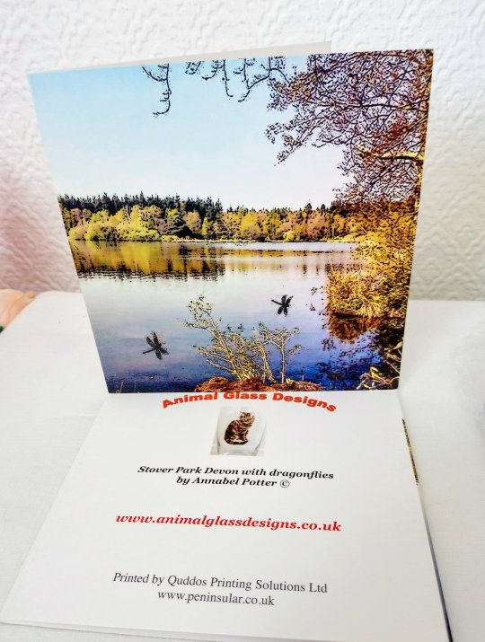 Devon Greetng Card with a photo of Stover park lake and trees in Autumn with dragonfly art