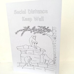 colouring card with monkeys and the the text 'social distance, keep well'