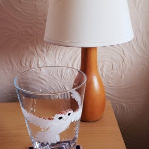 Barn owl gift set, glass and coaster photogrpahed with a bedside table lamp