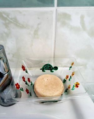 Soap dish recycled plastic. With custom artwork