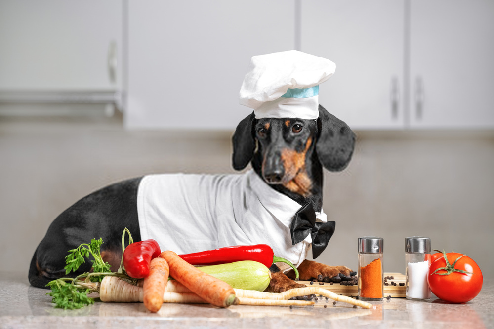 The Best Advice You Could Ever Get About Can Dogs Eat Tomatoes?