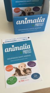 ANIMALIA PROTECT flyer