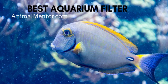 Best Aquarium Filter