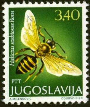 Yugoslavia-6