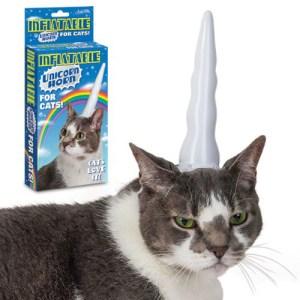 unicorn-cat-spring