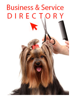 Directory-Banner2