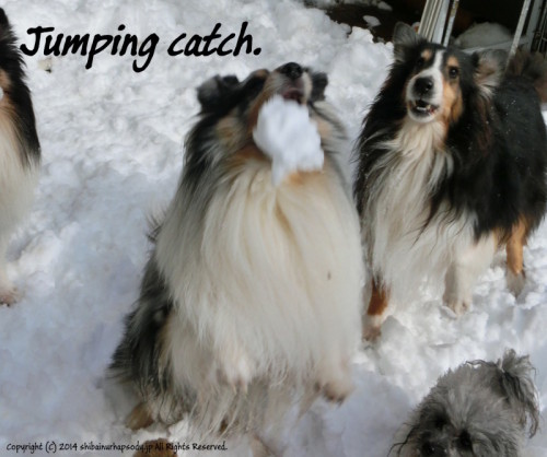 Jumping catch.
