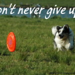 Don't never give up!