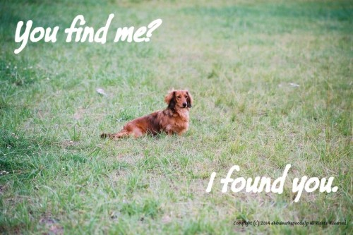 You find me?
