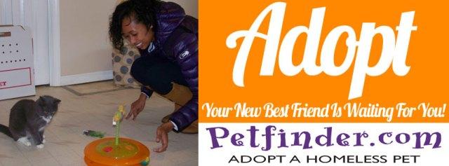 ARC-Adopt