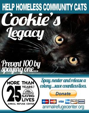 cookieslegacy300