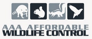 Affordable Wildlife Control, Affordable Raccoon Removal, Affordable Squirrel Removal, Affordable Skunk Removal