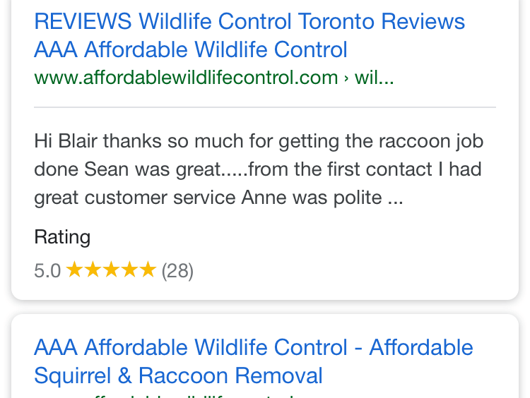 Affordable Wildlife Removal Reviews