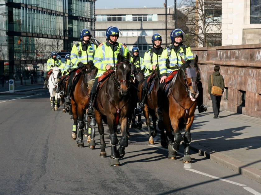 Police horses wearing eye and face shields and leg protection.
