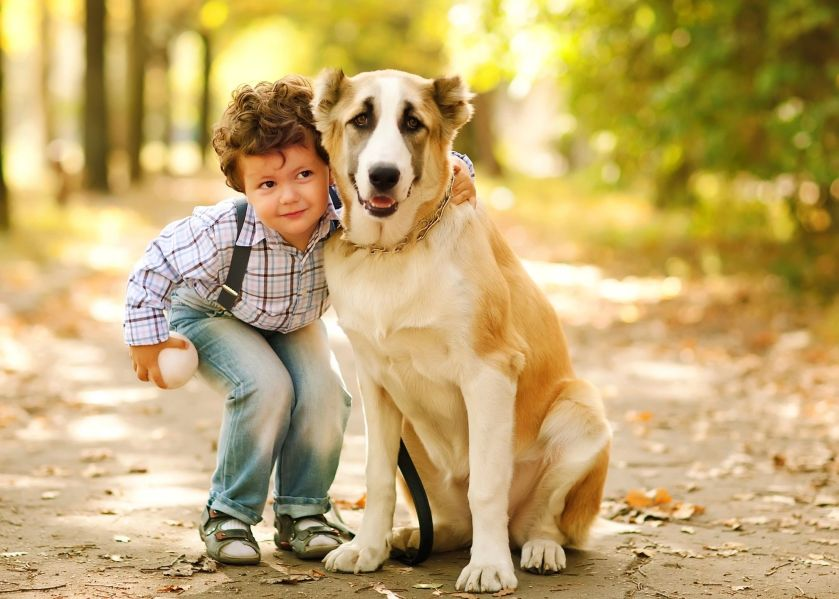 Child and pet dog
