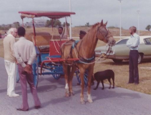 Nassau Surrey horse inspection at Fort Charlotte, 1975.