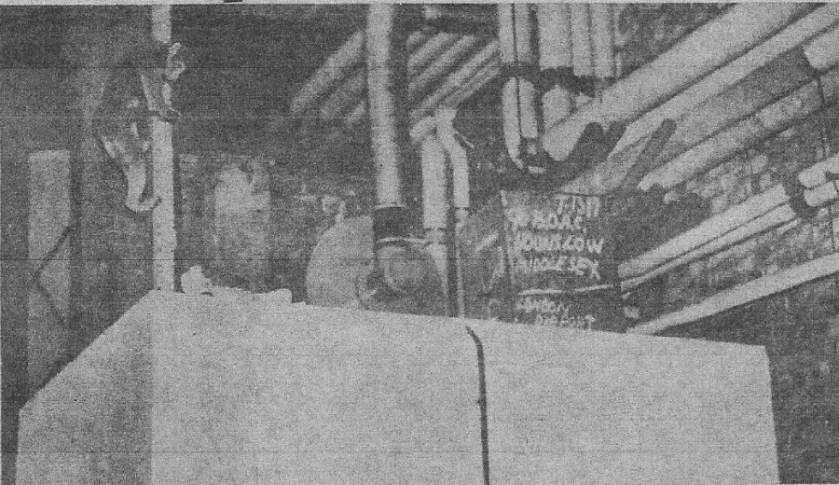 Bimbo escaped macaque at Heathrow Sunday Mirror 19 feb 1967