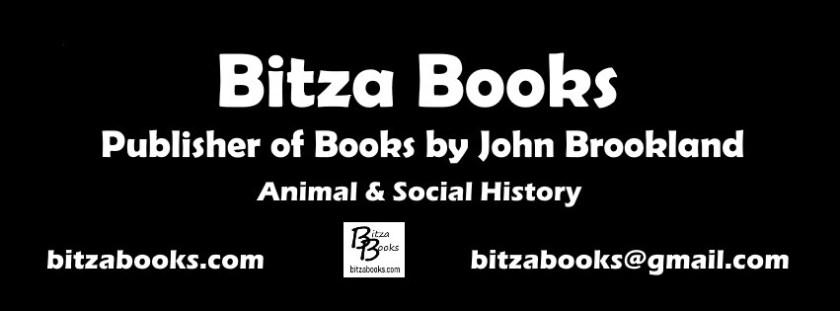 Bitza Books by John Brookland