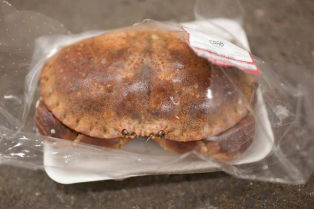 Live crab in vacuum pack.