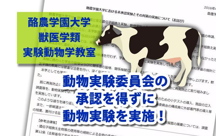 酪農学園大学未承認実験 動物実験 違反