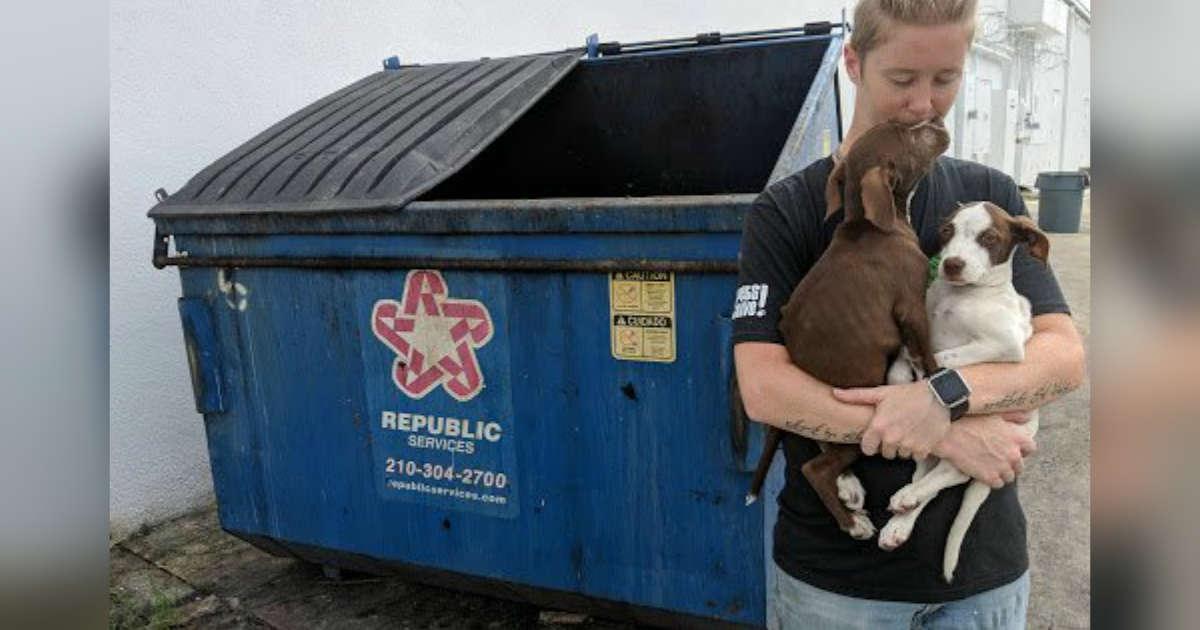 Sick Bonded Puppies Thrown Away In San Antonio Dumpster