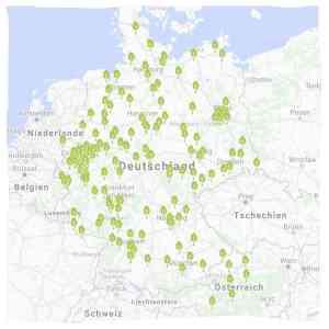 Animal Tree® Baumbestattungen für Haustiere in Deutschland und Österreich