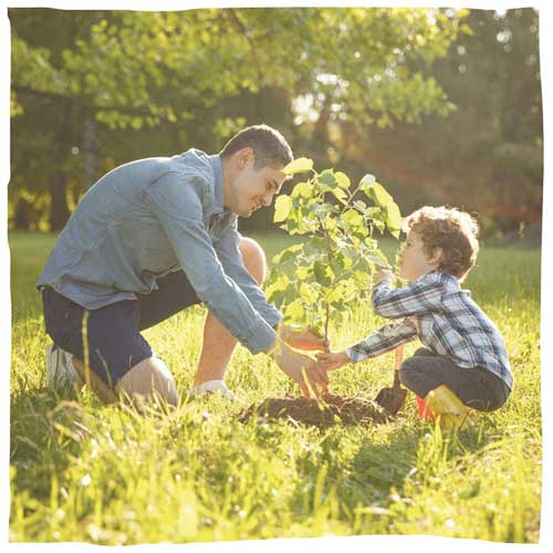2 Menschen pflanzen einen Baum