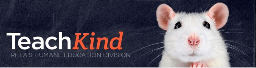 "A header-sized image with a white mouse looking directly into the camera and the words ""TeachKind: PETA's Humane Education Division"" next to the mouse."