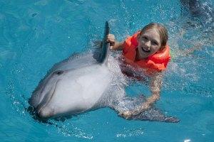 swim-with-dolphins