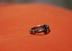 Passion (Rosary Ring)