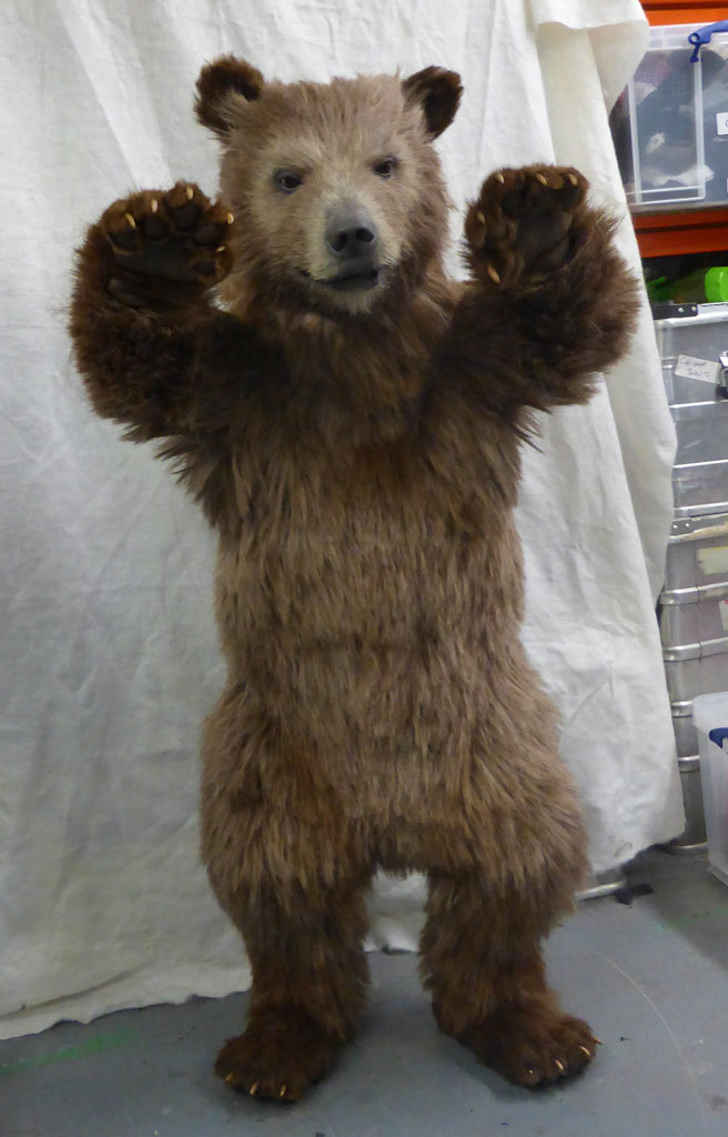 Animatronic Baby Brown Bear front view