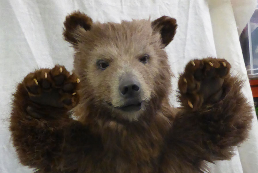 Animatronic Baby Brown Bear