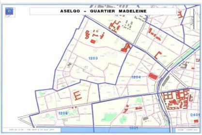 Iris du quartier Madeleine - Plan du SIGOR