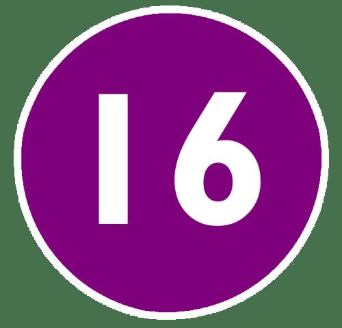 IFCO - 16_cinema
