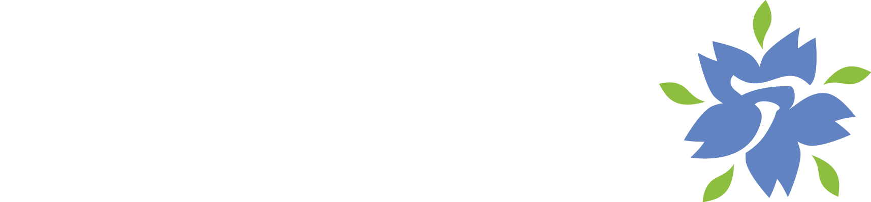 Stowarzyszenie Animatsuri