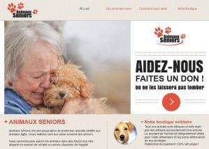 Site Internet Animaux Séniors